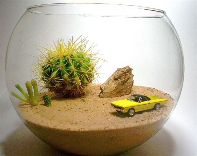 If I made a miniature garden for my husband of son, this would be it! With a Camaro or a Charger.