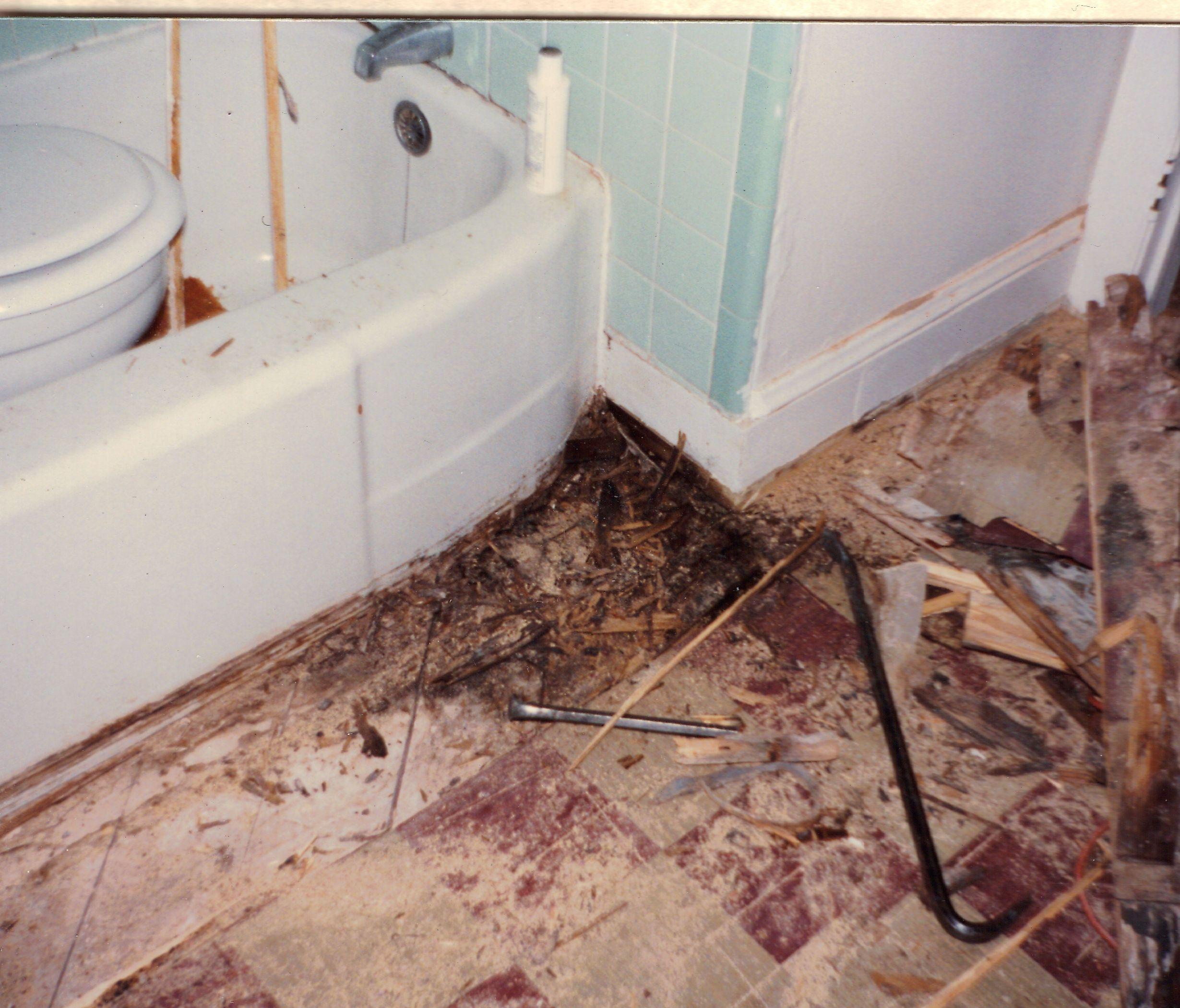 Rotten Bathroom Floor Google Search Bathroom Flooring Wood Bathroom Flooring