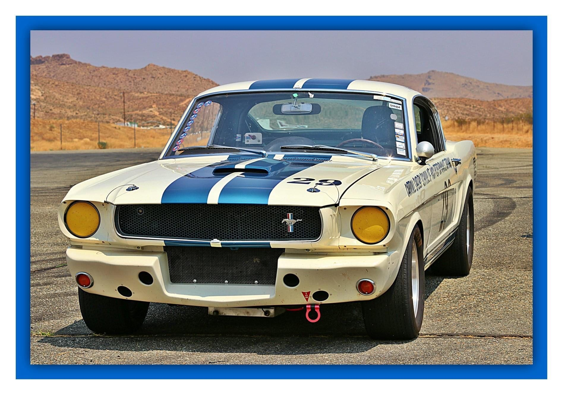 Pin On Shelby Gt350r