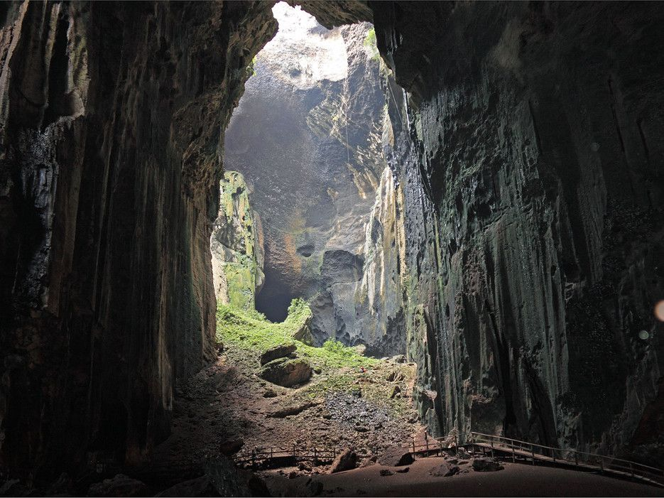 Borneo, MalaysiaThe Gomantong Caves in Malaysia are geographical wonders, with limestone walls reaching up to 300 feet in some spots, but visitors often leave the site describing it as one of the most disgusting wildlife experiences they've ever had.