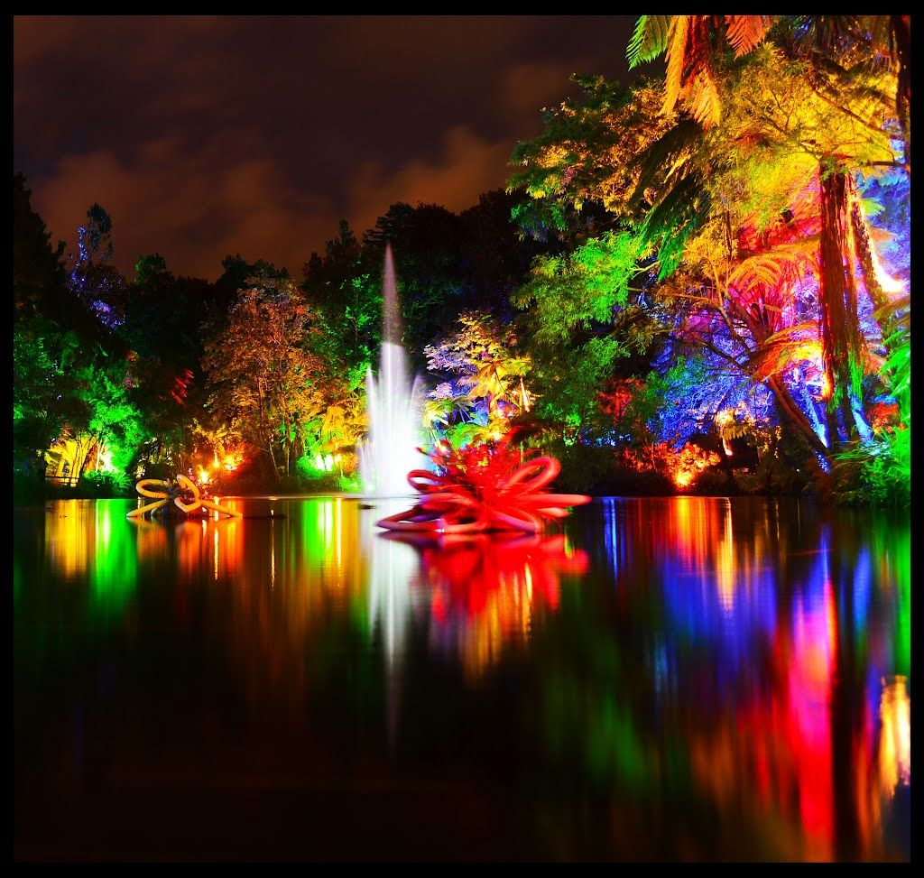 Tsb Bank Festival Of Lights At Pukekura Park Festival
