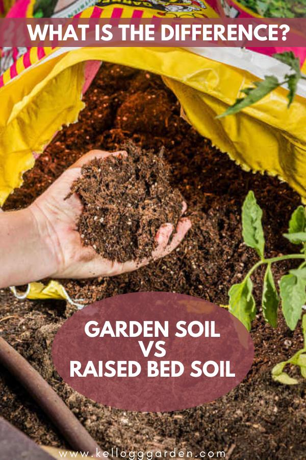 Pin on Gardening Tips & Tricks