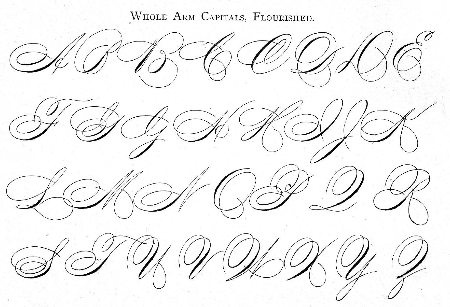 Worksheet Cursive Guide whole arm cursive capitals flourished from ames guide to self self