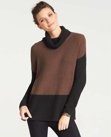 Colorblocked Relaxed Turtleneck Sweater