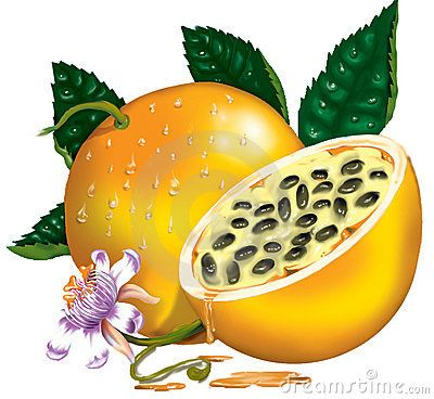 Passion Fruit Download From Over 53 Million High Quality Stock Photos Images Vectors Sign Up For Free Toda Fruits Drawing Passion Fruit Fruit Illustration