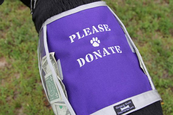 FUNDRAISER Dog Vest with large clear pockets for by COZYHORSE, $40.00