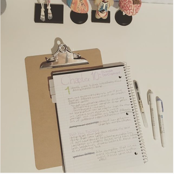 Day Of A Nursing Student Midliner Muji Pens Notes Notebook Anatomy