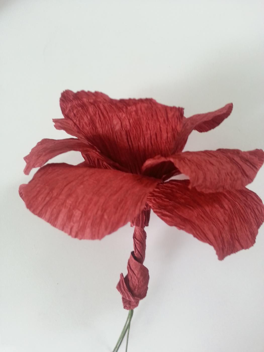 How To Make Crepe Paper Flowers Crepe Paper Streamers Paper