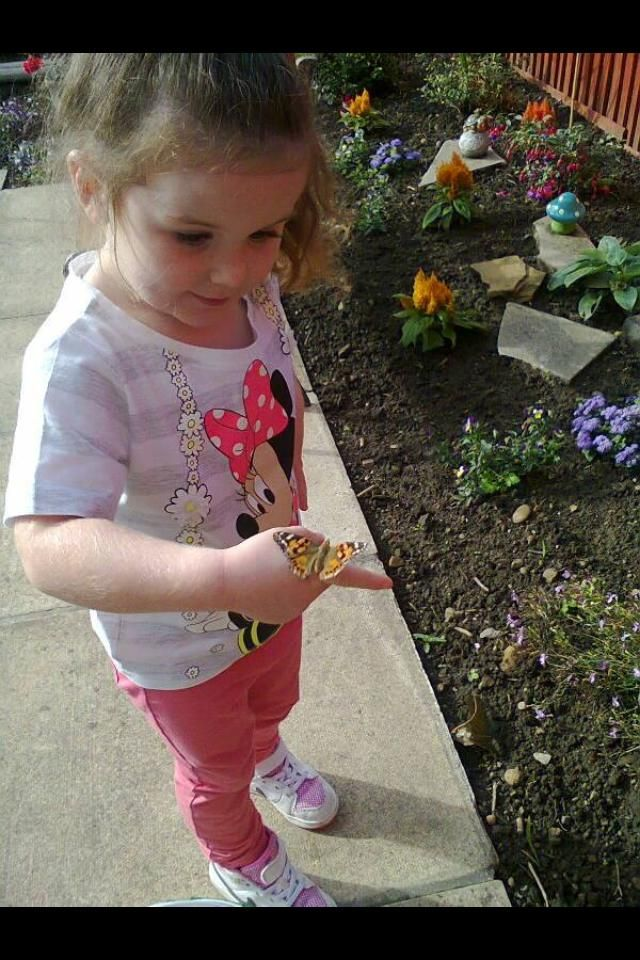 """""""My little girl Lexi letting her butterflies go... She has enjoyed learning and caring for them best birthday present we have ever bought her thank you!"""" Thanks to Laura Dimberline for sharing a beautiful photo and experience with us!"""