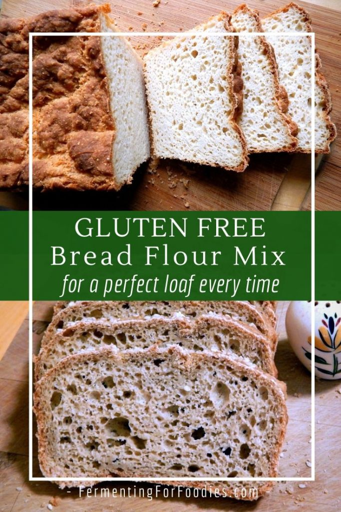 Gluten Free Bread Flour Mix Fermenting For Foodies Recipe In 2020 Gluten Free Bread Flour Gluten Free Bread Bread Flour Mix