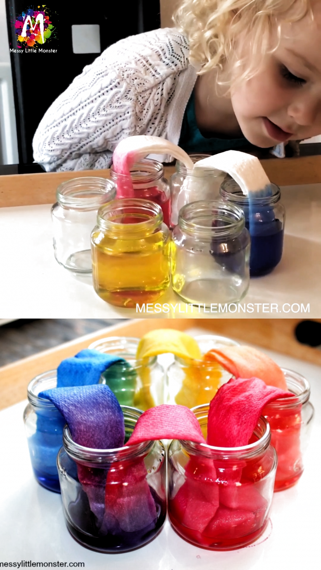 Rainbow Walking Water Science Experiment For Kids In