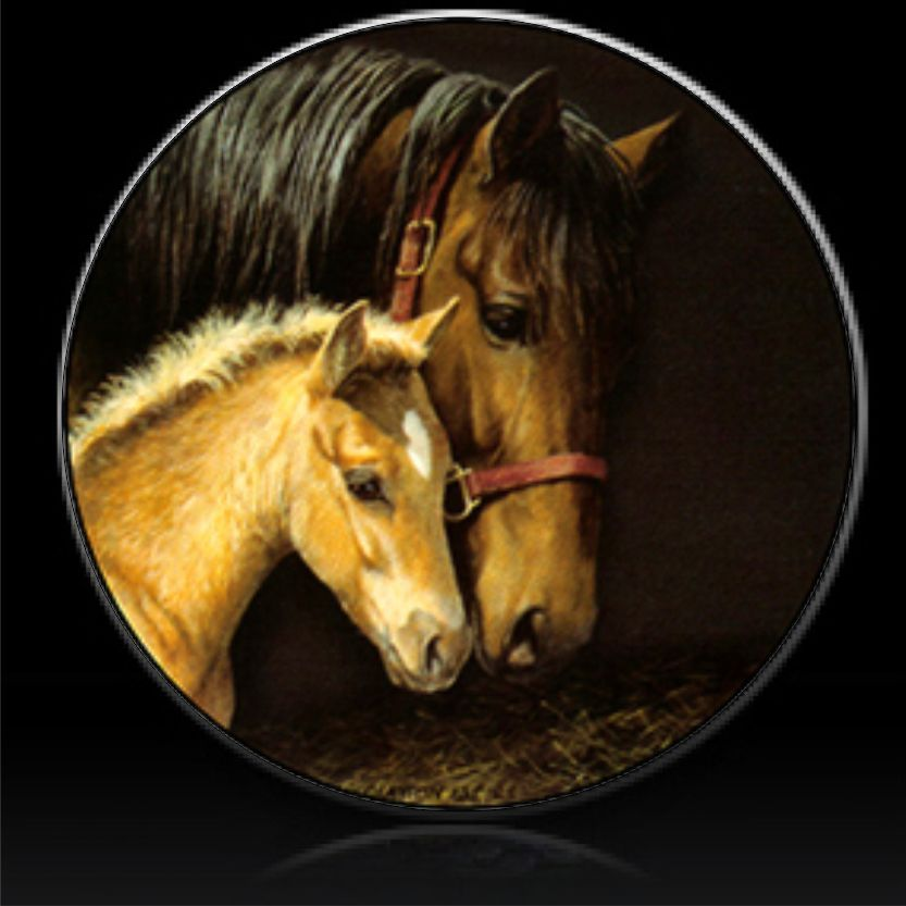 Pin On Horse Stock Designs From Tire Cover Central