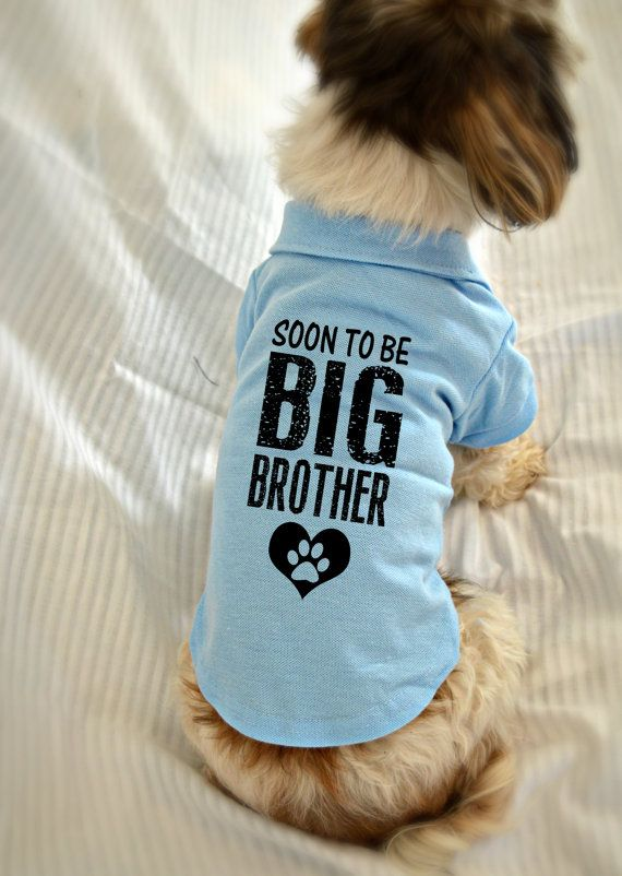 Dog shirt pregnancy announcement