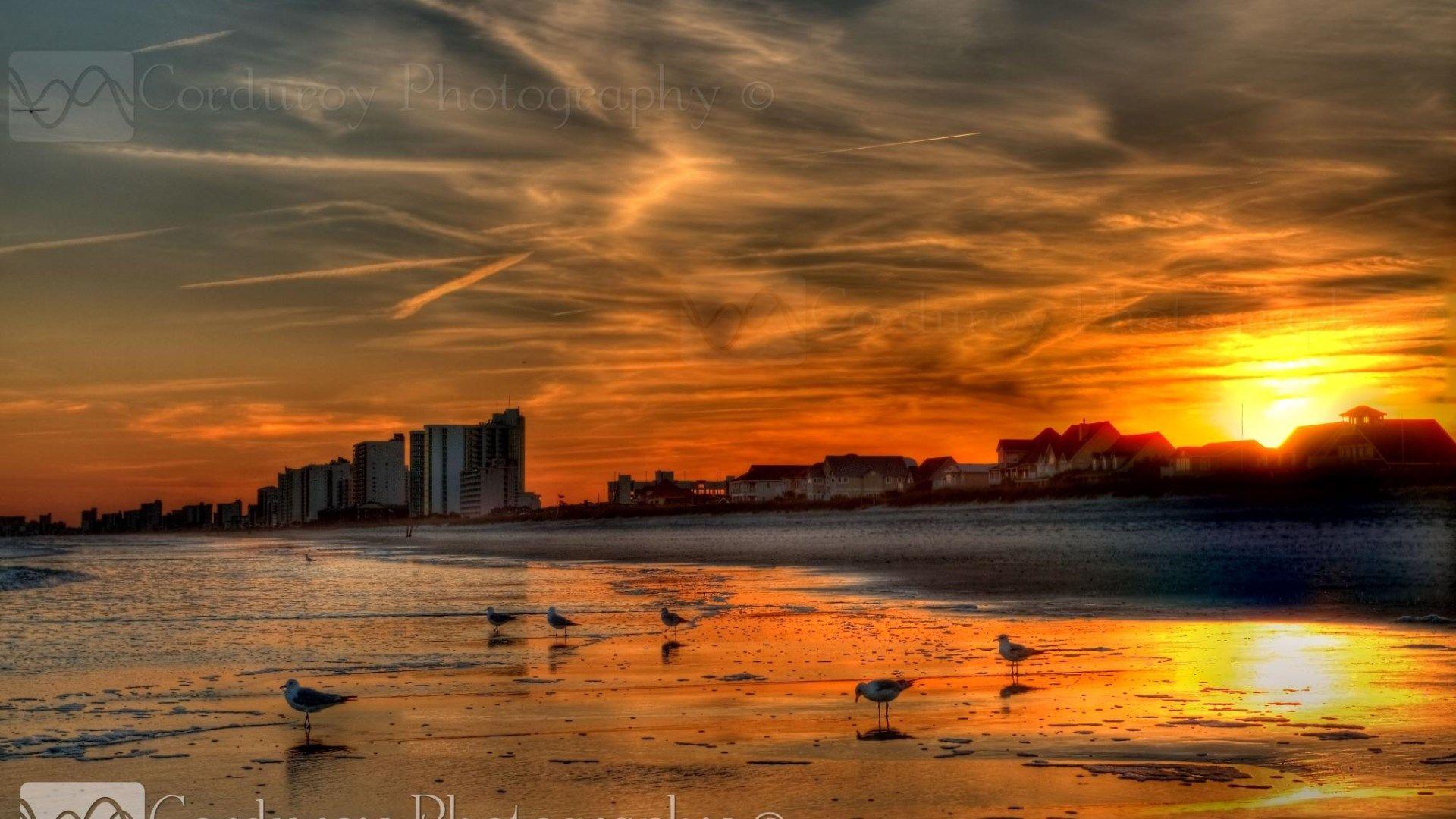 Corduroy Photography - Garden City Beach | ✈ TRV - The Beach ...