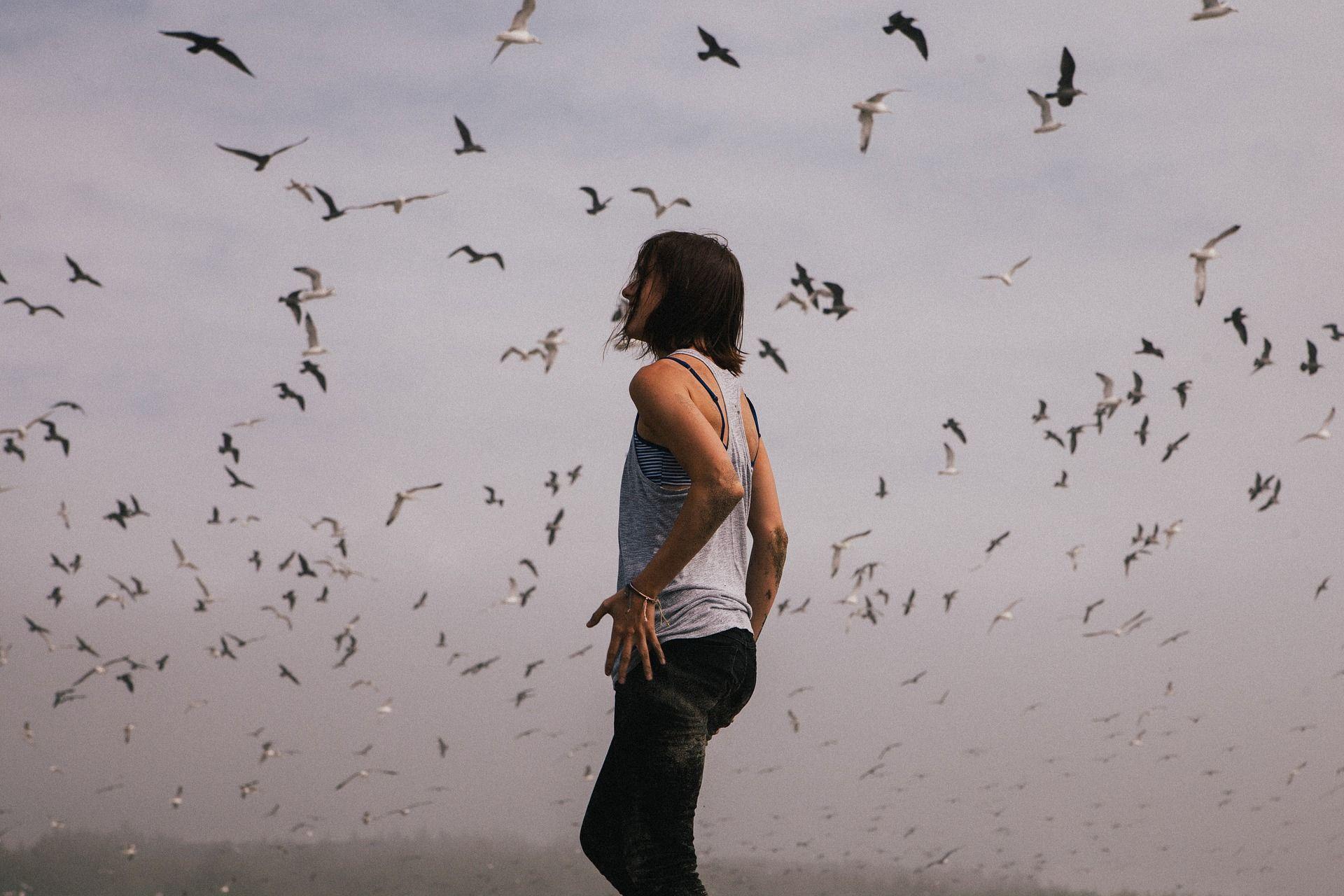 """Die Vogelhochzeit naht, so dass mir die Frage aufkommt, ob ihr denn auch alle gut zu Vögeln seid!Meine Jule meinte darauf mal: """"Ja, das bin ich!"""" Und sie hat es dann auch so formuliert! Ins Fachgebiet der Vogelkunde, auch Ornithologie genannt, hat Jule sich von erster Stunde, sofort und unheilbar verrannt! Um weiter im Gespräch…"""