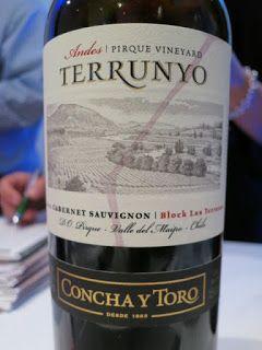 Concha Y Toro Terrunyo Andes Pirque Vineyard Cabernet