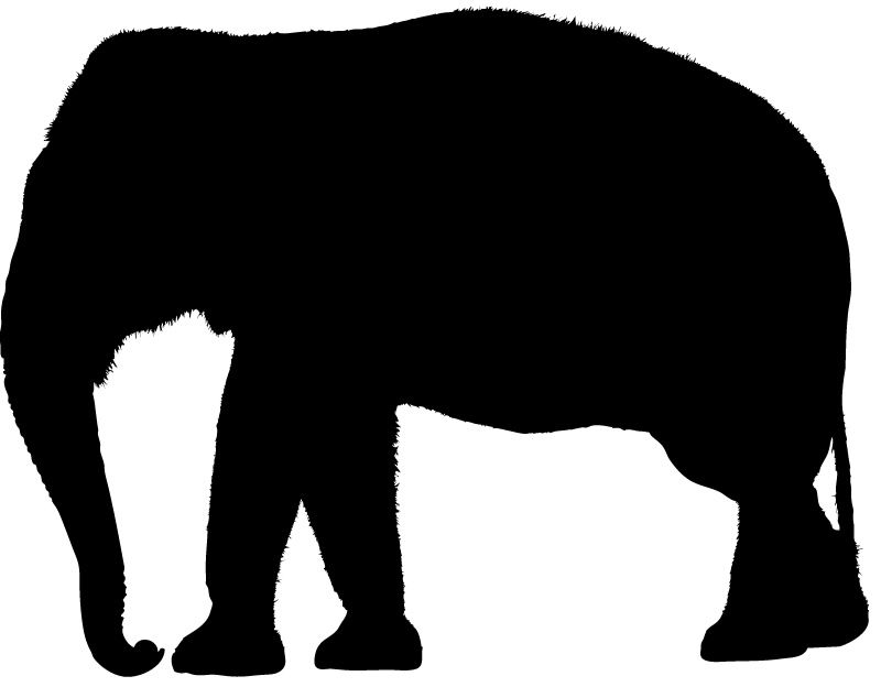 Indian Elephant Silhouette Images Pictures - Becuo ...