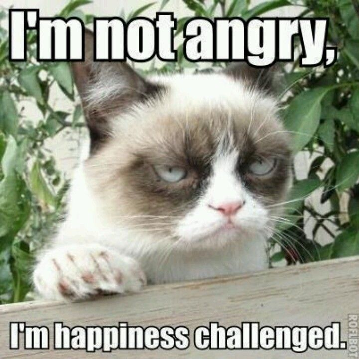 Happiness challenged