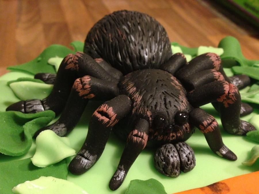 Tarantula deadly 60 cake Food Decorations Pinterest Rosebud