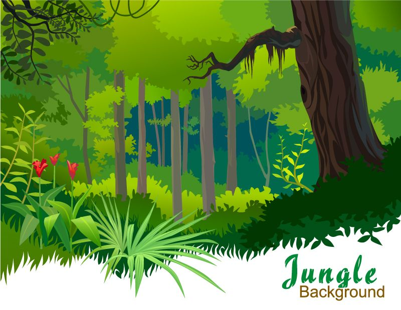Cartoon Tropical Forest Vector Material Landscape