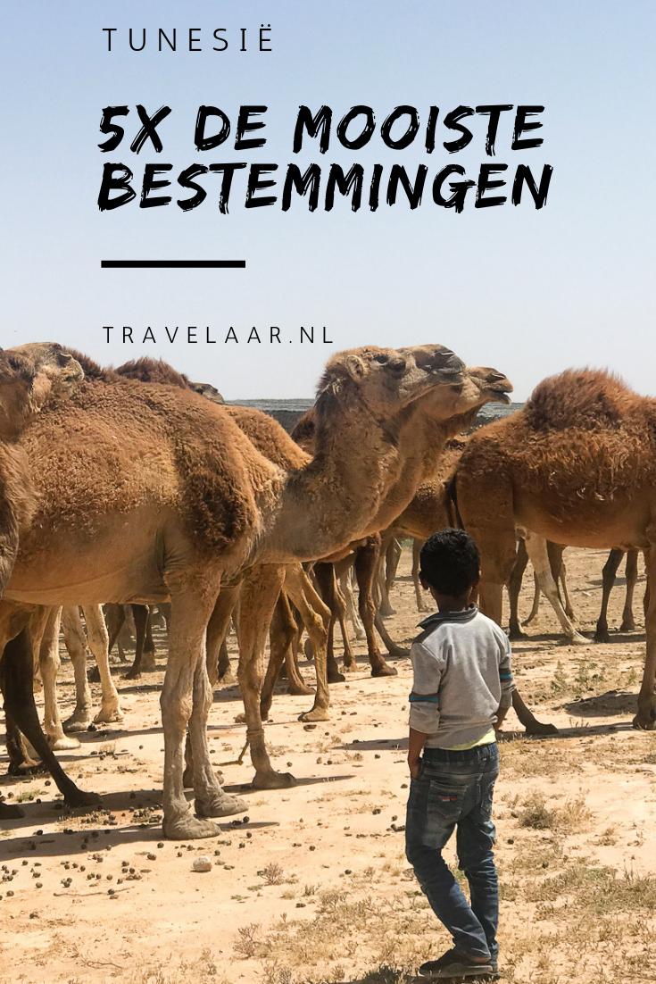 Tunesie Bezienswaardigheden 5 Toffe Bestemmingen Tunesie Bezienswaardigheden Bestemmingen