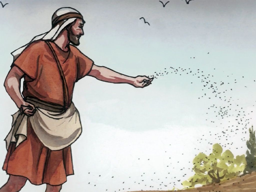Free Visuals: The Parable of the Sower Jesus tells a parable about a seed  being sown on different soils to help us understan…   Parables, Parables of  jesus, Sower