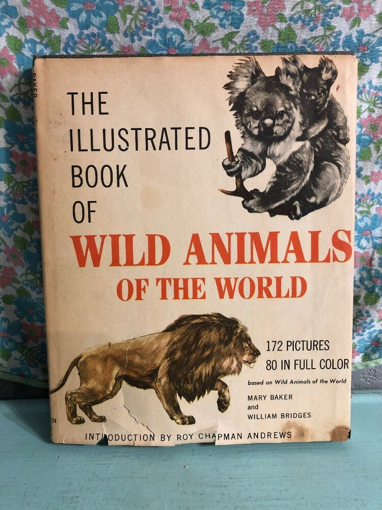 Details about 1960 The Illustrated Book of Wild Animals of