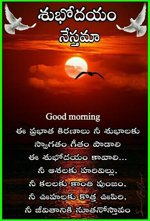Good morning quotes image by Sreelakshmi on Morning and ...