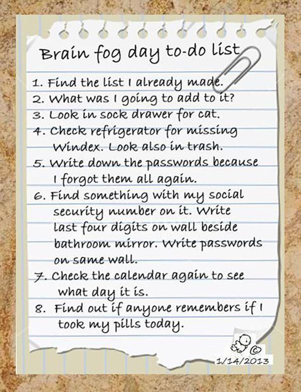 fibromyalgia meme: brain fog day to do list spoon theory, Spoonie, autoimmune,