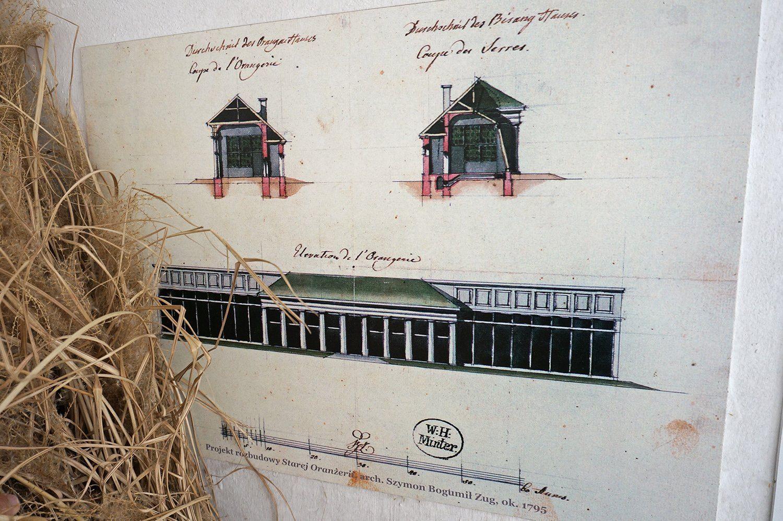 schnitt ansicht orangerie gew chshaus glashaus. Black Bedroom Furniture Sets. Home Design Ideas