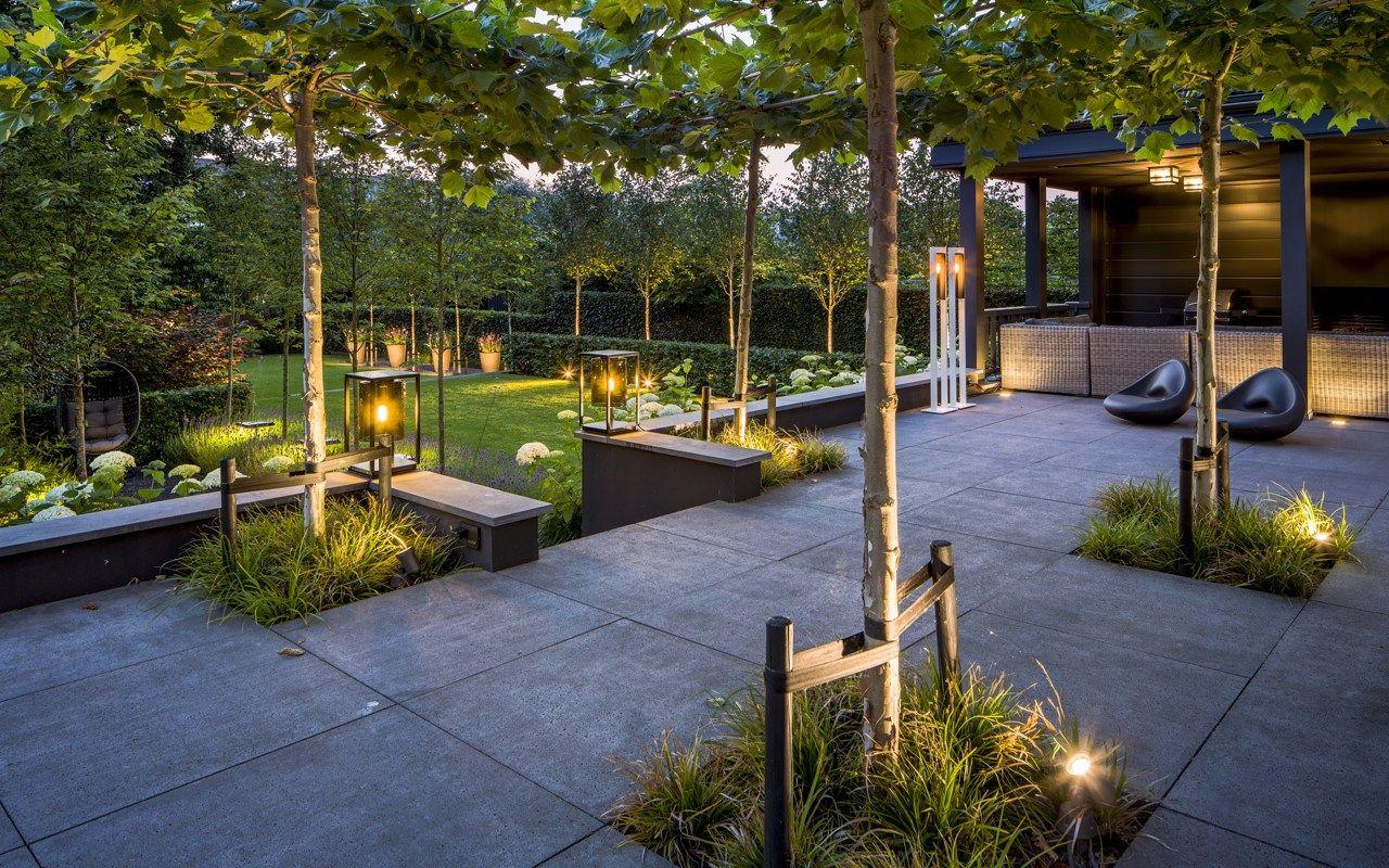 Moderne tuin met spectaculair verlichtingsplan. directe en indirecte