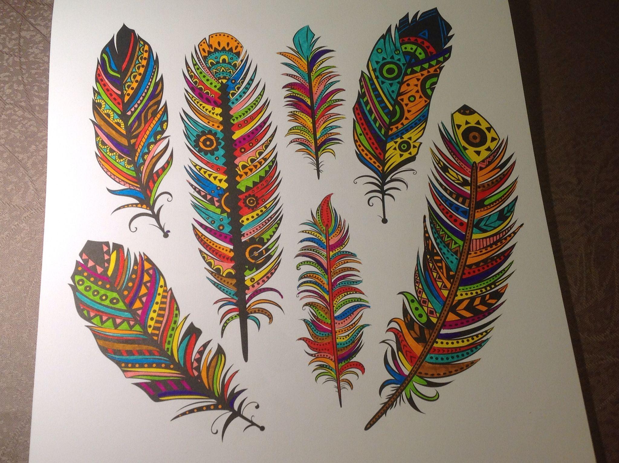 Gekleurde Veren Kleurboek Kleurplaten Kleuren