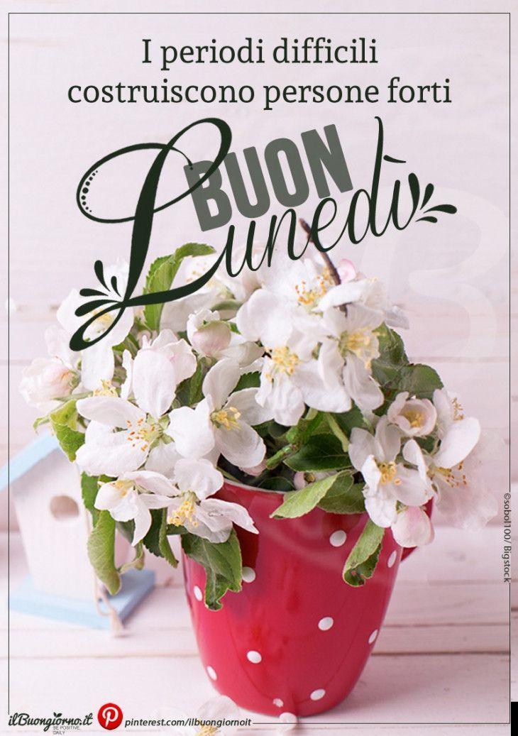Buon Lunedi Buon Lunedi Frasi Buon Lunedi E Buongiorno