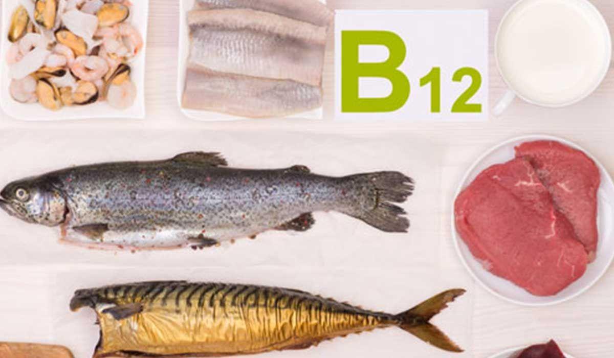 أين يوجد فيتامين B12 B12 Food