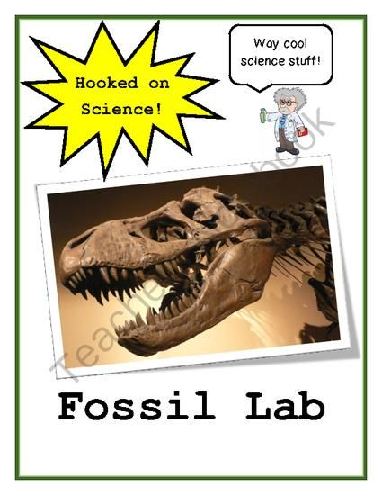 Fossil dating