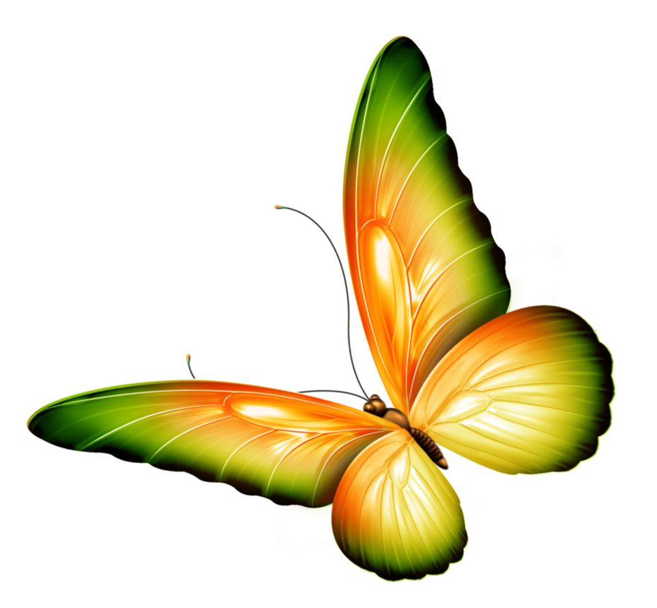 Pin by F-117 on DECORATIVE ELEMENTS PNG AND JPG | Pinterest | Butterfly