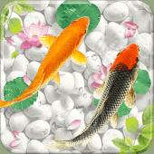 Fish Live Wallpaper Free Aquarium Koi Bgs 1 1 5 Apk Koi Fish 3d Live Wallpaper For Android Koi Fish 3d Free Download Koi P Fish Wallpaper Android Wallpaper Koi