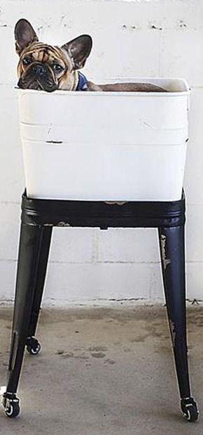 Old School Washtub On Stand Planter Storage Dog Bath Metal Wash Tub Wash Tubs Vintage Bath