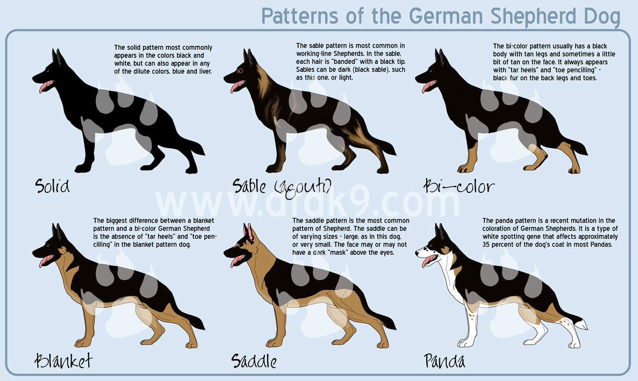 German Shepherd Patterns by on