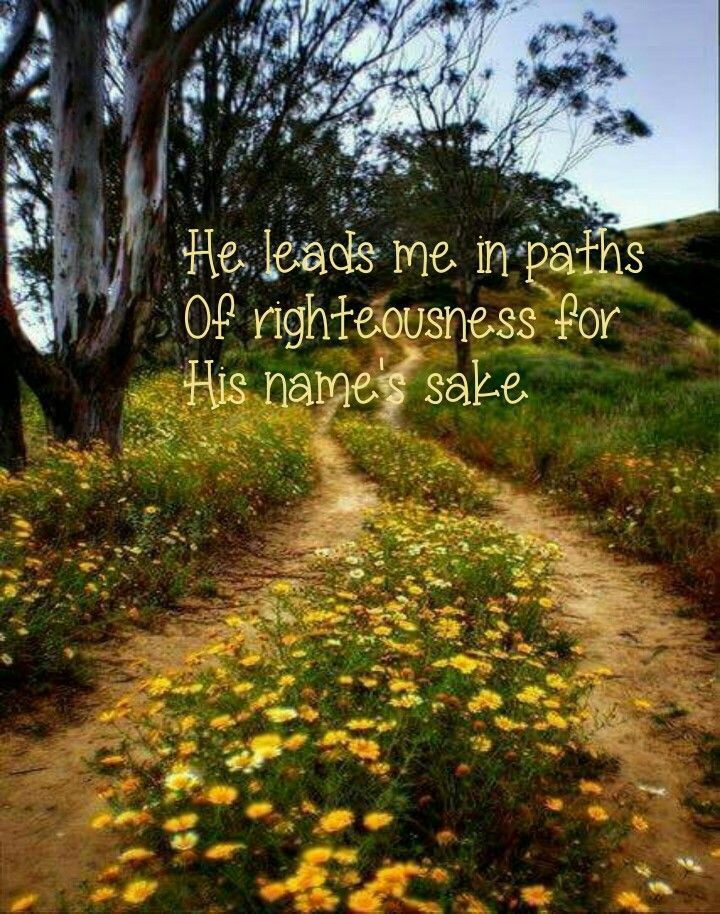 He leads me in paths of righteousness for His name's sake | Bible psalm 23, Psalm 23, Righteousness
