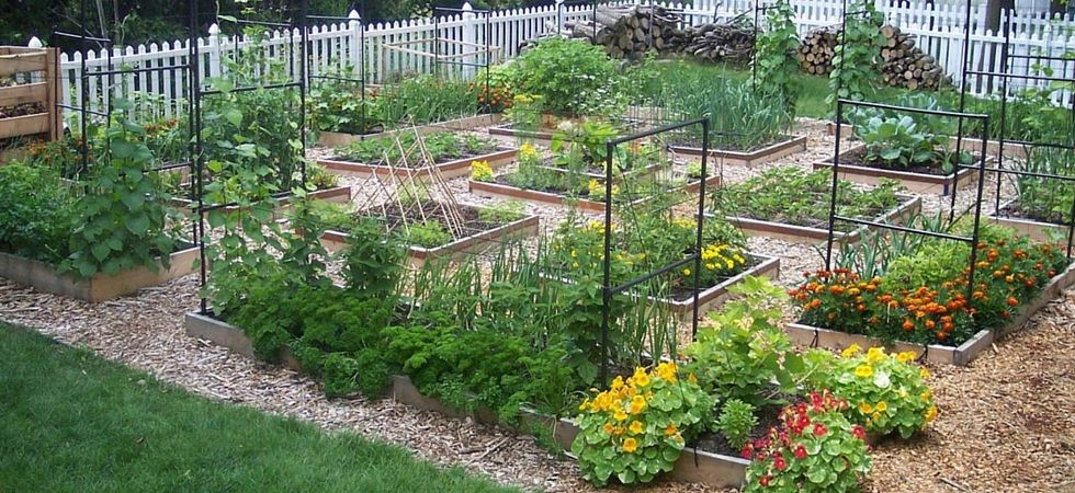 Home How To Square Foot Garden Courses Garden planning