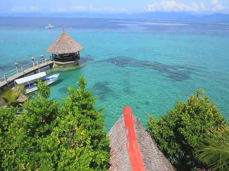 Moalboal In Cebu Island Travel Beautiful Places To Visit Cebu