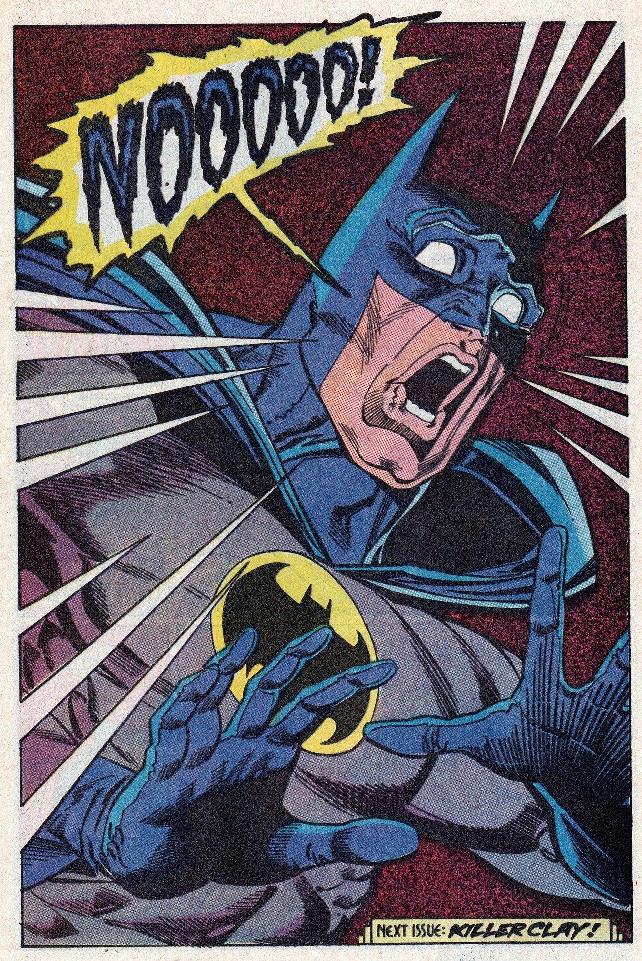 """""""NOOOOO!"""" -Batman"""
