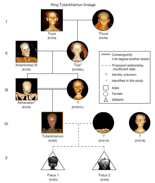 morgan freeman family tree