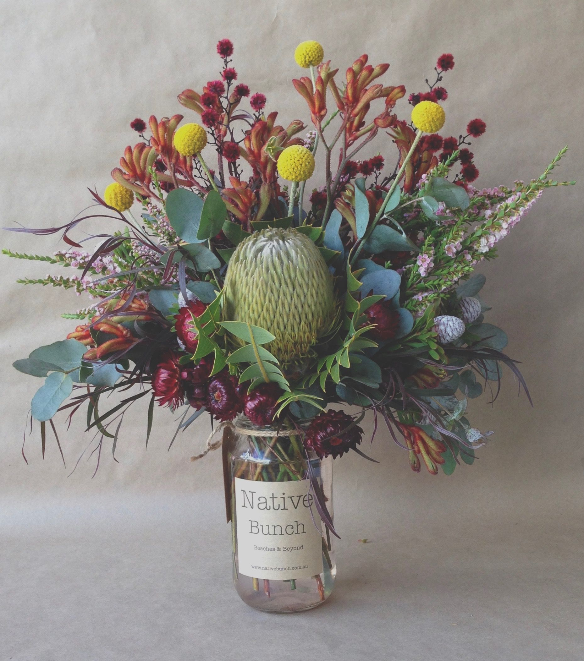 Australian native flowers, Banksia, billy Buttons