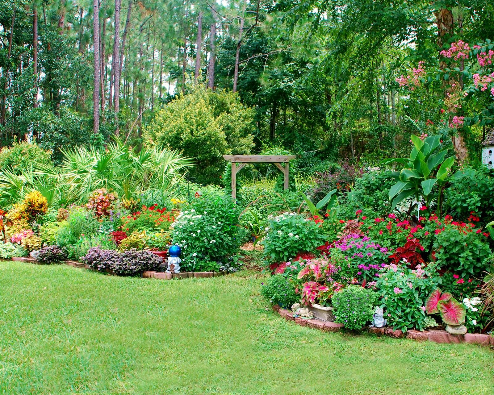 Mary O. - Jacksonville, FL | Beautiful flowers garden ...