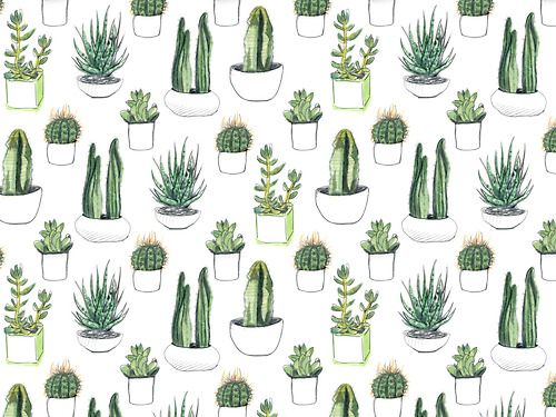 Cactus design by crumpetsandcrabsticks on Tumblr Whimsy