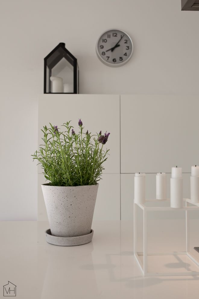 lavendel. details. from Valkoinen Harmaja