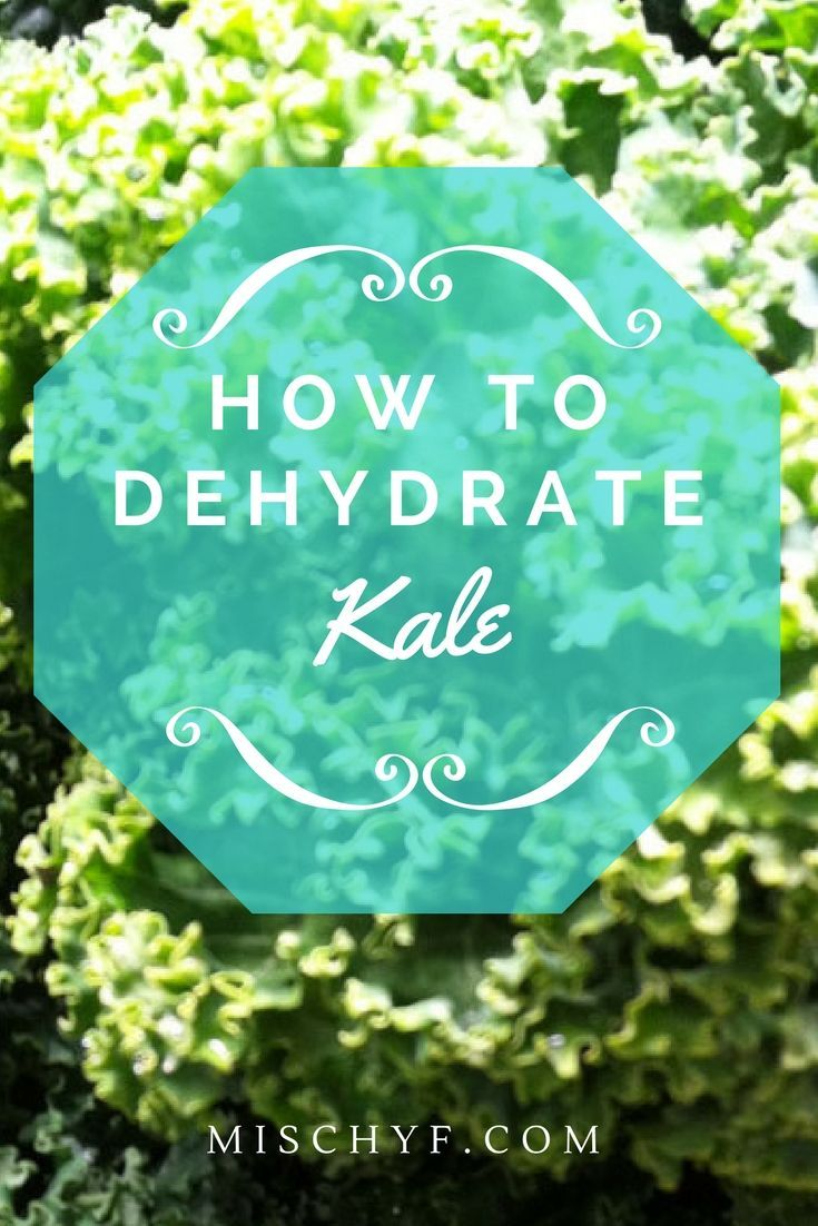 Dehydrate kale for use in recipes soups and stews