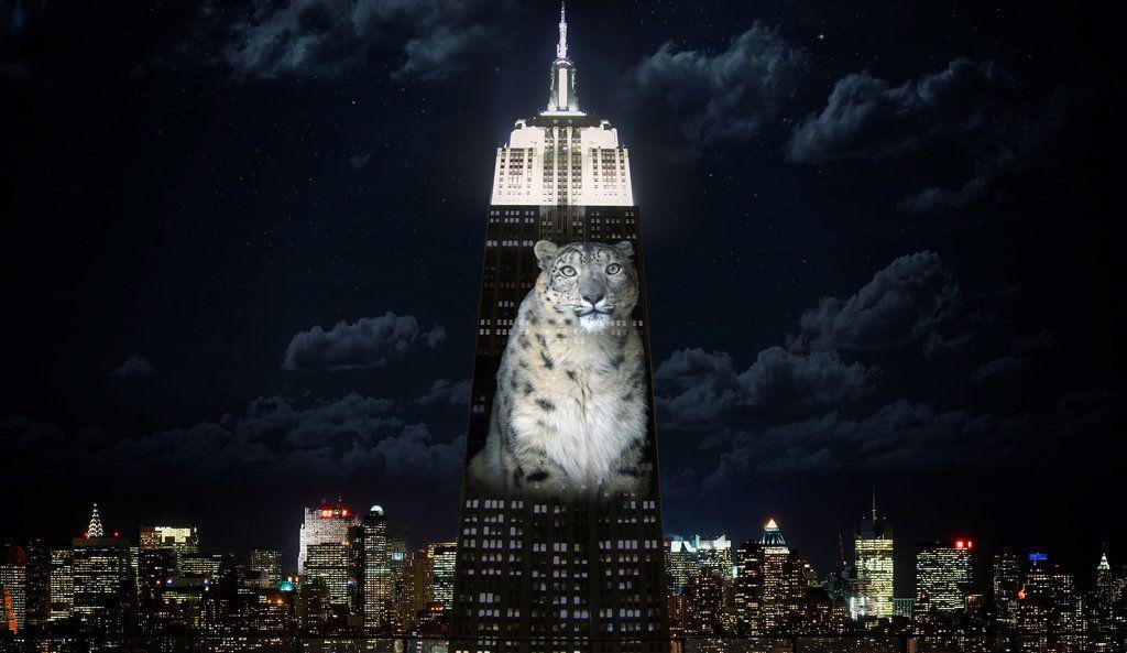 Download Endangered Species Full-Movie Free